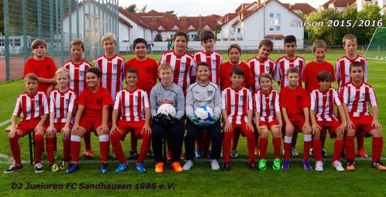 Mannschaftsfoto der D2-Junioren